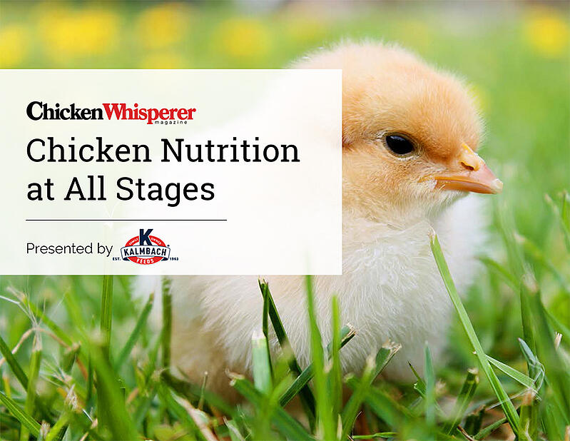 ChickenNutritionatAllStages_KalmbachFeeds_cover