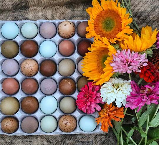 Appearance is paramount when selling eggs