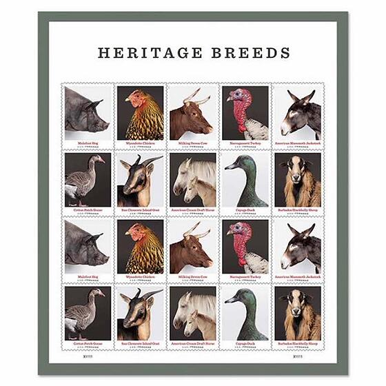 A full pane of heritage breed stamps