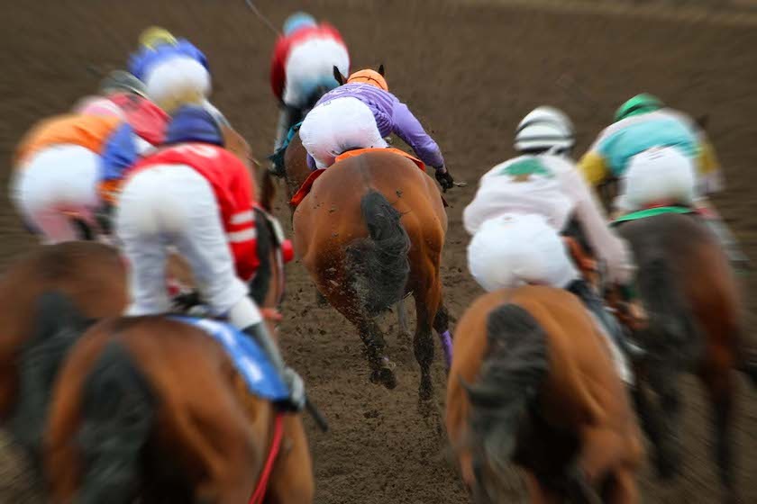 exciting horse race