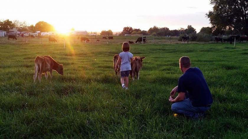 Dilger family and calves