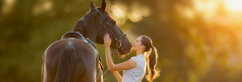 Horse owners love their horses, and sometimes supplements need to be looked at