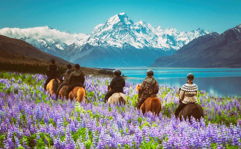 Try horseback riding with the family